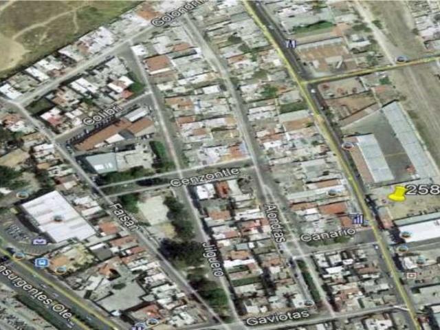INDEPENDENCIA, LOS LLANITOS, NAYARIT, 1 Room Rooms,Terreno,En renta,INDEPENDENCIA ,1172